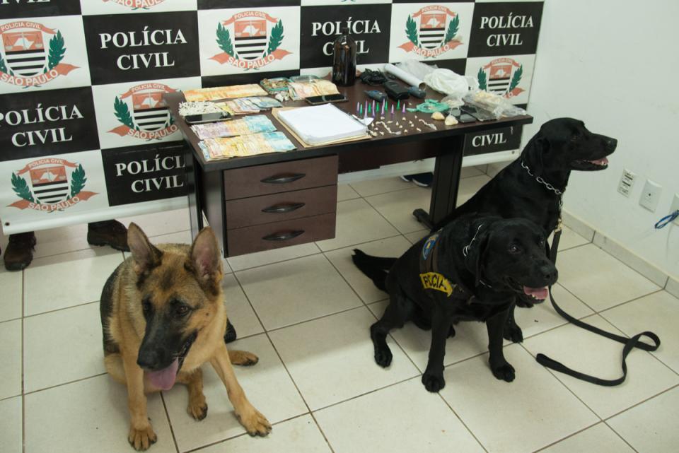 OPERAÇÃO POLICIAL CONJUNTA APREENDE   8 SUSPEITOS E GRANDE QUANTIDADE   DE ENTORPECENTES EM TATUÍ